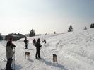 Schneeschuh-Tour 2012_8